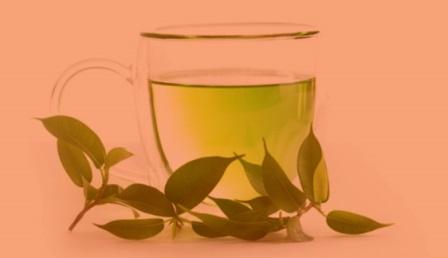 Диета на зеленом чае что это