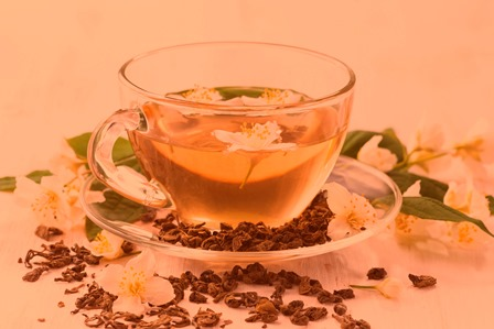Польза и вред чая из жасмина