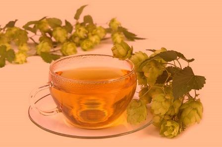 чай из эвкалипта