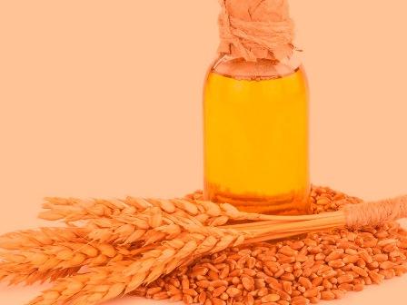 Масло зародышей пшеницы что это