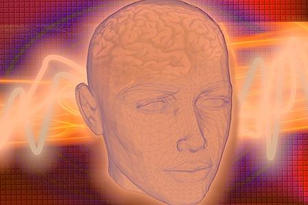 Чем кормить свои мозги