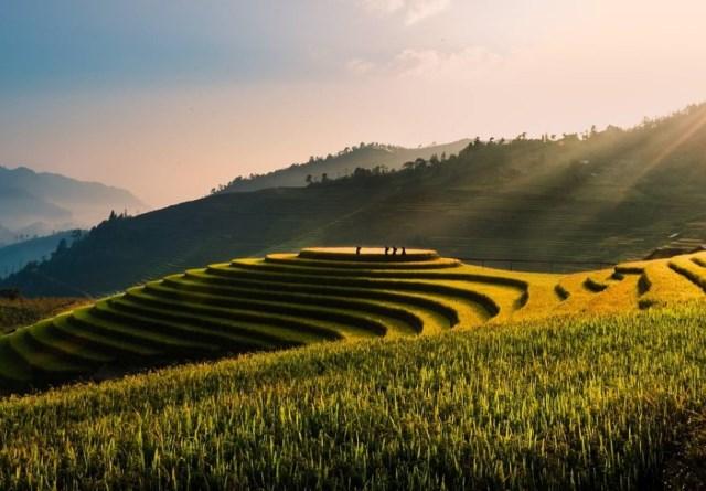 Вьетнам это страна