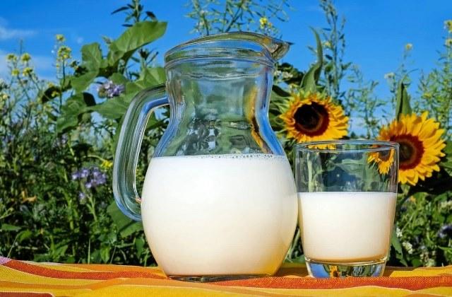 молоко что это такое