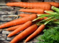 как варить морковь для салатов